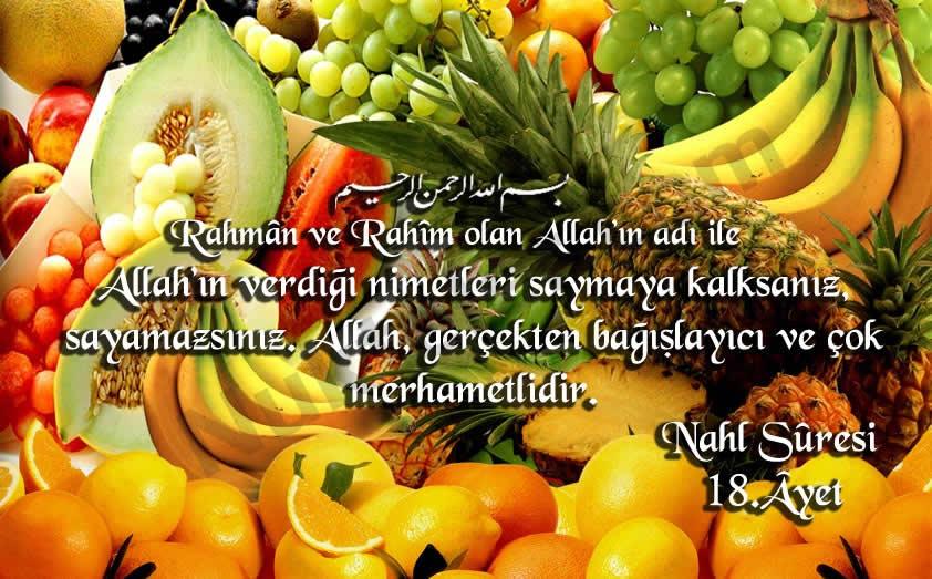 nahl-18-ayet